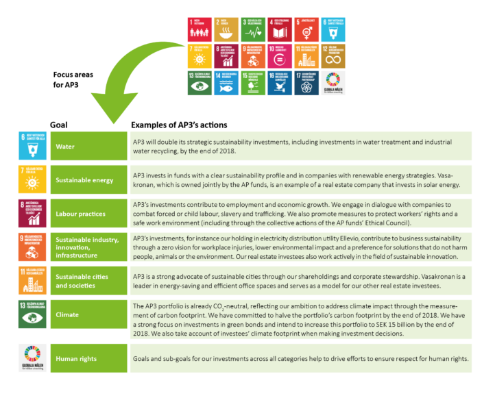 AP3 supports the UN Sustainable Development Goals